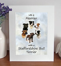 """Staffordshire Bull Terrier Life is Merrier 10""""x8"""" Mounted Print Picture Fun Gift"""
