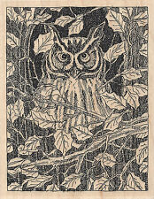 Owl In Tree Wood Mounted Rubber Stamp IMPRESSION OBSESSION H1921 New