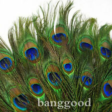 10Pcs Beautiful Natural Peacock Tail Feathers 10-12inch For DIY Decoration Hot