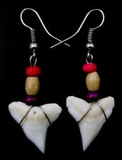 STUNNING TIGER SHARK TOOTH earrings : GA353