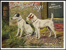 JACK RUSSELL WIRE FOX TERRIER LOVELY VINTAGE STYLE DOG FOOD ADVERT PRINT POSTER