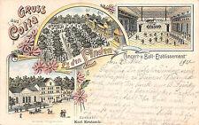 Gruss aus Cotta Restaurant zu den Lindern Litho Postkarte 1901