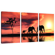 3 Piece Orange Canvas Art Pictures Africa Elephants Wall Prints 3102