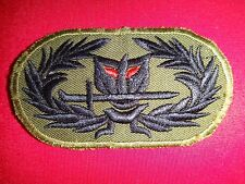 THAILAND RANGER Team In Southeast Asia, Vietnam War Subdued Patch