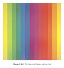 Spectrum IV by Ellsworth Kelly Art Print 30x28 Poster - OUT OF PRINT  LAST ONES