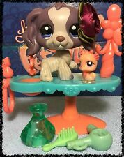 Littlest Pet Shop LPS RARE PURPLE COCKER SPANIEL DOG DOT BLUE EYES # 1209