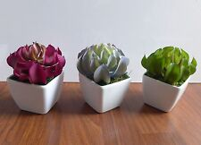 3 Colors Artificial Sleep Lotus Mini Plants Potted