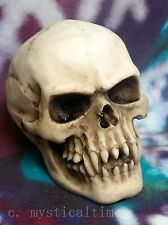 Latex Rubber Mould Mold Molds Gothic Vamp Skull