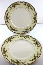 "Dinner Plate Johnson Brothers Pareek Riviera Multicolor 10"" Crazing 1 Chip 1931"