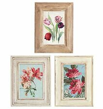 25 Flowers Flea Market Florals Pictures Framed Wallies Wall Paper Sticker Decals