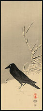 Japanese Print Reproduction: Blackbird near reeds in the snow - Fine Art Print
