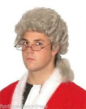 Grey Court Barrister Wig With Rolled Sides & Ponytail Lord Fancy Dress Panto