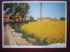 POSTCARD YORKSHIRE BARNBURGH RAPE