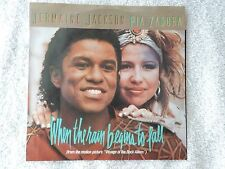 """Jermaine Jackson and Pia Zadora """"When The Rain Begins To Fall/Substitute"""" PS 45"""