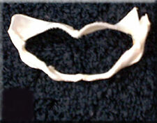"""Real Baby Shark Jaw (about 3"""") Sealife Taxidermy Nautical Display Marine Life"""