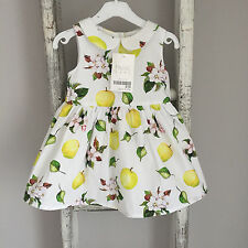 BNWT Baby Girl Next Dress Size 0-3 Months White Apple Floral Summer Party New
