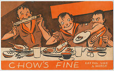 Chow's Fine, Eating Like a Horse! Vintage Boy Scouts of America Postcard 1947