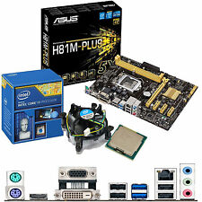 Intel Core i3 4170 3.7 GHz & ASUS H81M-PLUS - Scheda madre e CPU Bundle