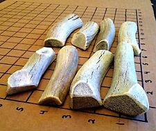 Made For Gentle Chewers. 2 Pound Soft Chew Split Elk Antler Dog Chew Mix-M/L
