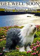Old English Sheepdog  GET WELL SOON  PID100 A5 Personalised Greeting Card