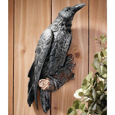 Raven Bird Statue Statuary Wall Art Decoration Sculpture Halloween Gothic Decor