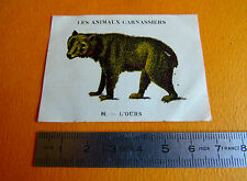 CHROMO 1939 CASINO LES ANIMAUX CARNASSIERS N°81 L'OURS BEAR