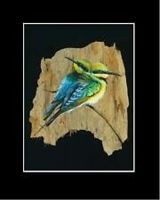 RAINBOW BEE EATER  PRINT -- SIGNED BY ARTIST - Unique Australiana