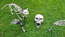Halloween Party/Prop Lawn Skeleton Bones/Skull/Ground Stakes+cat red eye lights