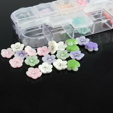 Lovely 60pcs 3D Nail Art Flower Gems Acrylic Tips Decoration DIY Plastic Case