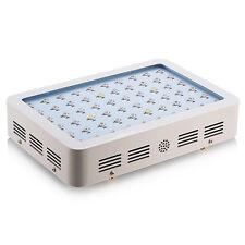 600W Led Plant Grow Light Full Spectrum Lamp For Flower Growth Veg Hydro System