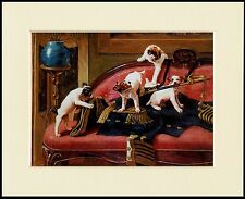 JACK RUSSELL TERRIER PUPS AT PLAY LOVELY DOG PRINT MOUNTED READY TO FRAME