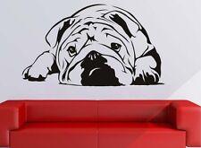 English Bulldog Wandtattoo Wallpaper Wand Schmuck 53 x 81 cm Wandbild Hund