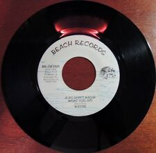 Rare Wayne Punch Beach Records 1311825 45rpm Hooked on a Feeling Just Dont Know