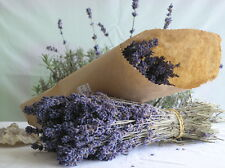 "Beautiful Smell Good 8""-10"" Dried Lavender Start with 80+ Stems"
