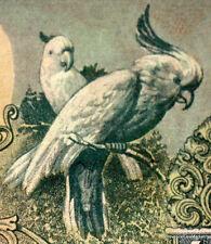 INDONESIE Splendide billet de 10 LIMA RUPIAH Pick66  PERROQUET  1959