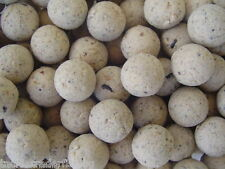 DYNAMITE BAITS WHITE CHOCOLATE & COCONUT CREAM 15mm BOILIES - 100g - FREE P & P