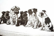 Diana Thorne 1935 TERRIER PUPPIES Junior League Committee Dog Art Print Matted