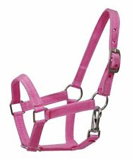MINI Size Nylon Adjustable Horse HALTER Nickel Plated Hardware & Throat Latch