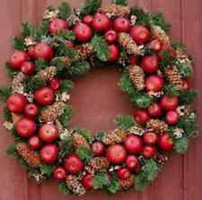 Williamsburg Style Apple Wreath Pine Wreath Base for Fresh Fruit Decoration 23""""