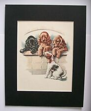 Fox Terrier Cocker Spaniel Dogs Print Win Martin Over Wall Bookplate 1950s w/Mat