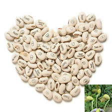 100PCS DIY Magic Bean Seed Plant Love Gift Growing Message Word AE22