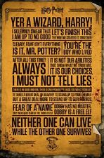 HARRY POTTER - QUOTES POSTER 24x36 - 160538