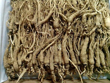1 Kilo (2.2 lb) Dry Transplant Wild Ginseng Root About 15 Years, Almost complete