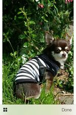 Chihuahua (XSmall size) Dog Clothes Black & White Strips T Shirt Pet Clothing