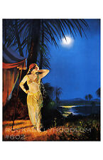 Pin Up Girl Poster 11x17 art deco exotic flapper girl maiden full moon
