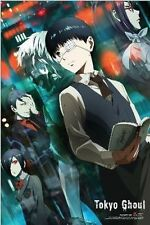 TOKYO GHOUL - KANEKI & FRIENDS - ANIME POSTER - 24x36 CHARACTERS 51791