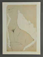 Egon Schiele Lichtdruck Collotype 36x50 Signed Weiblicher Torso Female 1911 Nus