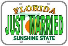Novelty Number Plate, Personalsed Fun American Florida Licence Plate