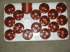 """18-MINI PLASTIC FLOWER  POTS AND 1-""""NO DRAIN HOLE"""" TRAY for SEED STARTING-CACTUS"""