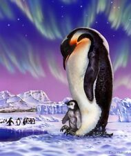 Signature Collection Penguins Super Soft Plush Queen Size Blanket 79x95 Inches